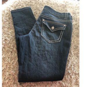Paisley Sky Skinny Jeans Size 16